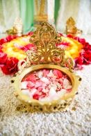 Emily Pillon Photography_Vishal Jain_Wedding_San Jose_011521-75